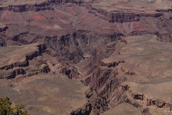 Photograph - Grand Canyon South Rim Central by John Johnson