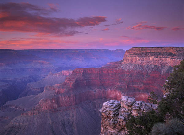 Photograph - Grand Canyon South Rim From Pima Point by Tim Fitzharris