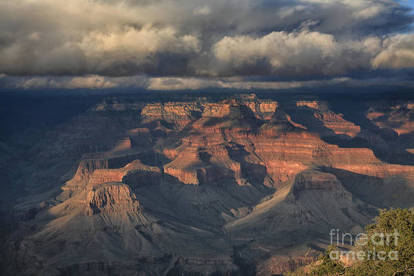 Wall Art - Photograph - Grand Canyon View by Timothy Johnson