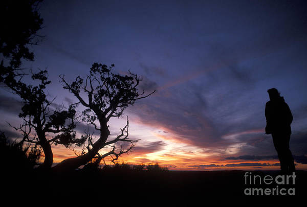 Photograph - Grand Canyon Sunset by Jim West