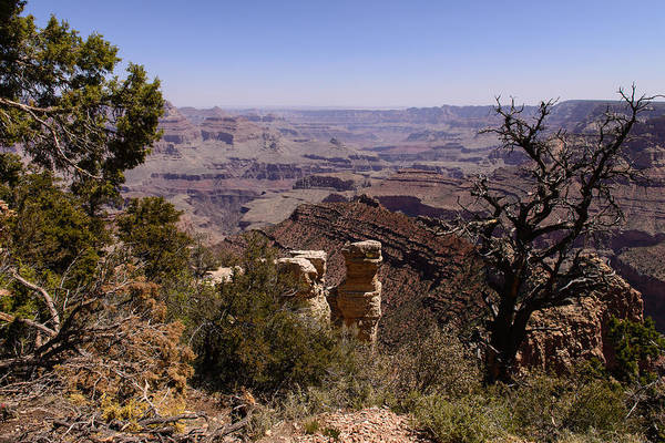 Photograph - Grand Canyon View B by John Johnson