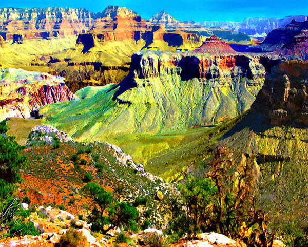 Photograph - Grand Canyon View From Kaibab Trail by Bob and Nadine Johnston