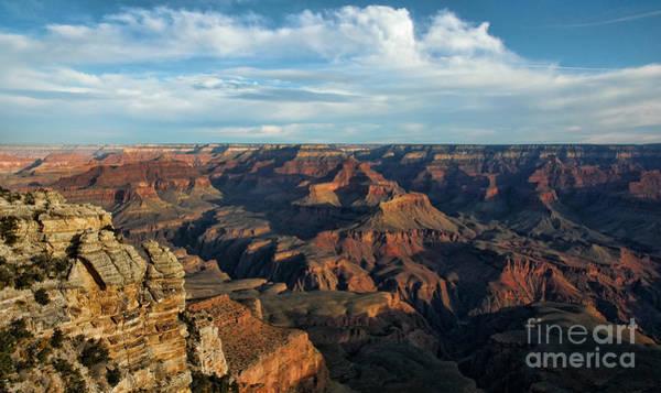 Photograph - Grand Canyon View by Sharon Seaward