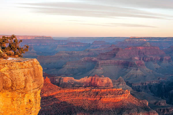 Mather Point Photograph - Grand Canyon With Orange Morning Light by Bob Stefko