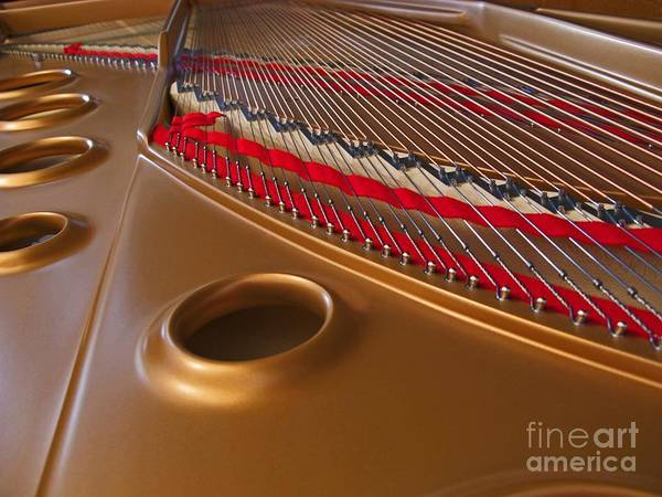 Grand Piano Photograph - Grand Piano by Ann Horn