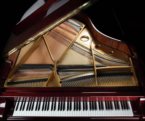 Piano Photograph - Grand Piano Overview, Keyboard by Dszc
