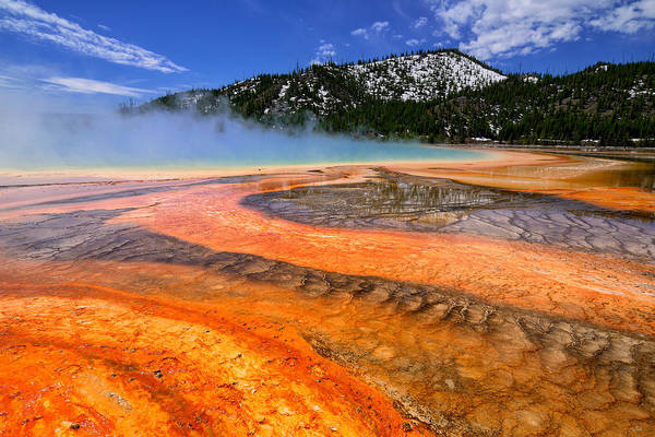 Art Print featuring the photograph Grand Prismatic Spring Boardwalk View by Greg Norrell