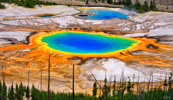 Art Print featuring the photograph Grand Prismatic Spring Limited Edition by Greg Norrell