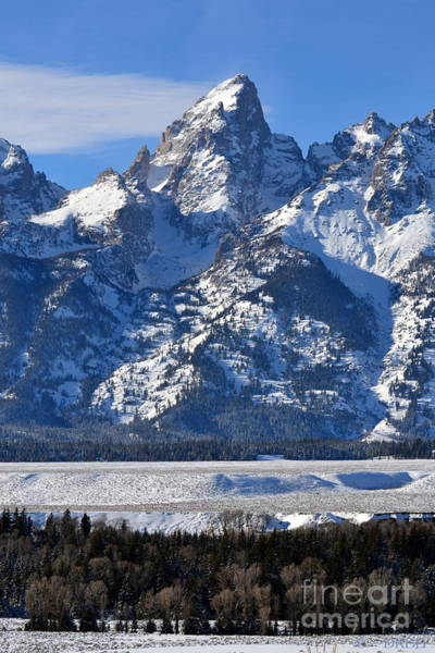 Photograph - Grand Teton  by Dorrene BrownButterfield