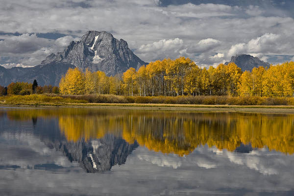 Photograph - Grand Teton Gold by Wes and Dotty Weber