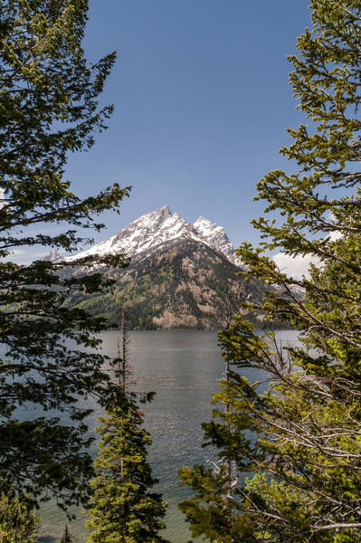 Wall Art - Photograph - Grand Teton On Jenny Lake - Grand Teton National Park Wyoming by Brian Harig