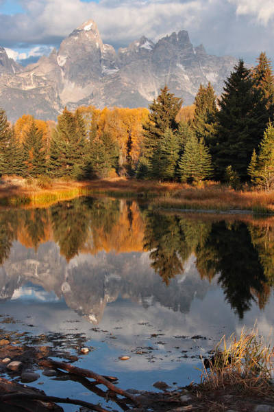 Photograph - Grand Teton Reflection by Theo OConnor