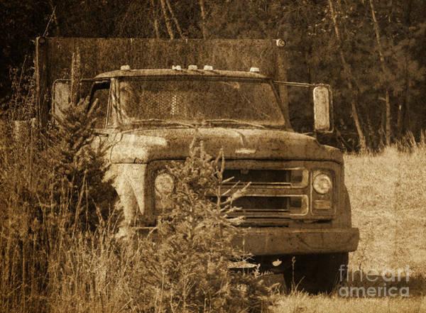 Photograph - Grandpa's Old Truck by Andrea Anderegg