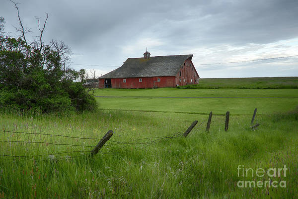 North Idaho Photograph - Grangeville Barn by Idaho Scenic Images Linda Lantzy
