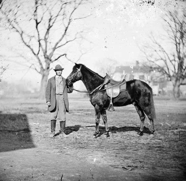 Wall Art - Photograph - Grant Pony, 1865 by Granger