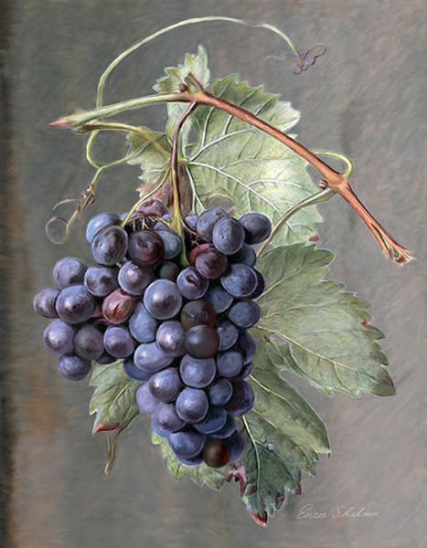 Wall Art - Painting - Grapes by Portraits By NC