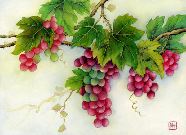 Delicious Wall Art - Painting - Grapes by Hailey E Herrera