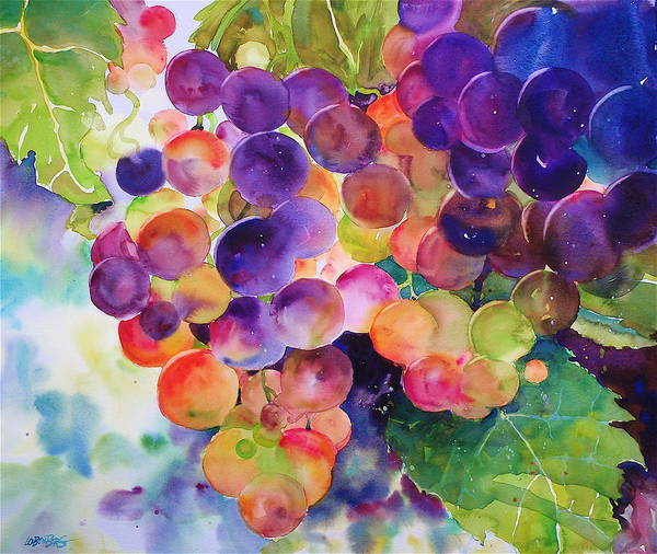 Painting - Grapes In The Sun by David Lobenberg