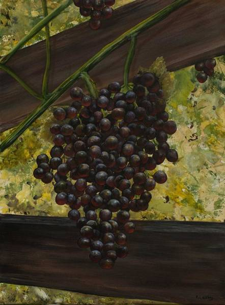 Painting - Grapes On The Vine by Nancy Lauby