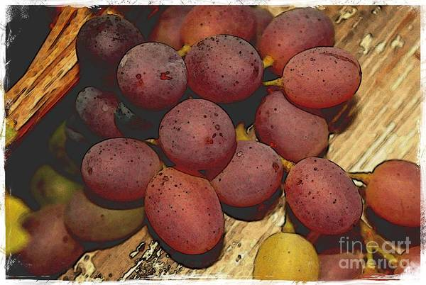 Photograph - Grapes Over The Fence - Digital Art by Carol Groenen