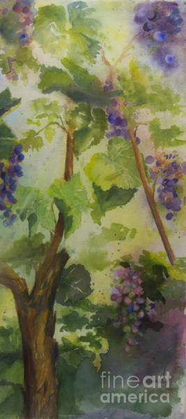 Wall Art - Painting - Baby Cabernets IIi by Maria Hunt