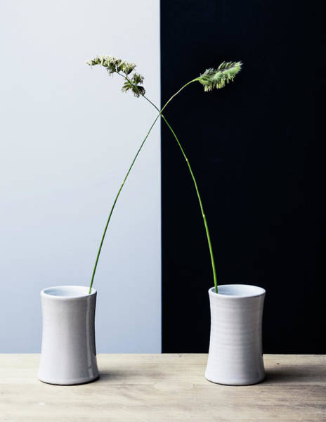Vases Photograph - Grass by Humusak