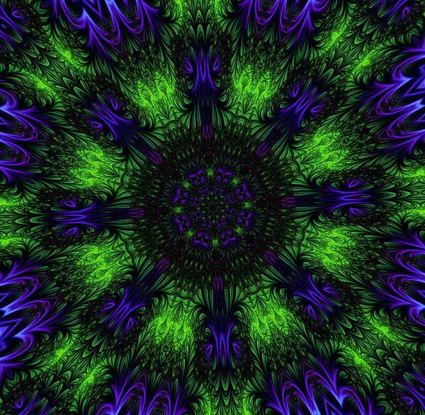 Digital Art - Grass Views Kaleidoscope by Barbara A Lane