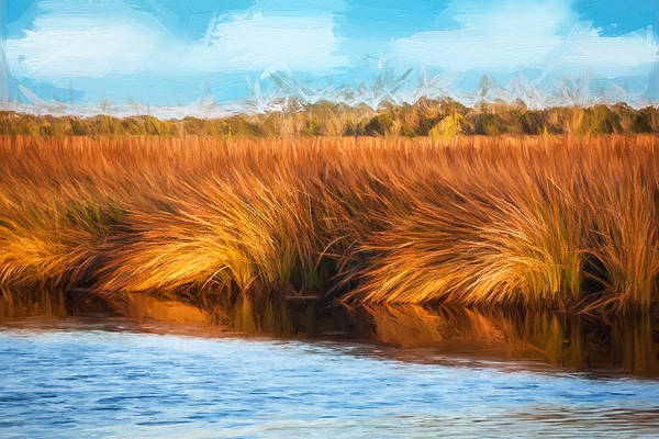 Ormond Photograph - Grasses At Sunset Painted  by Rich Franco