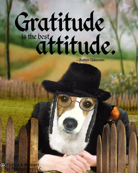 Digital Art - Gratitude Is The Best Attitude - 4 by Kathy Tarochione