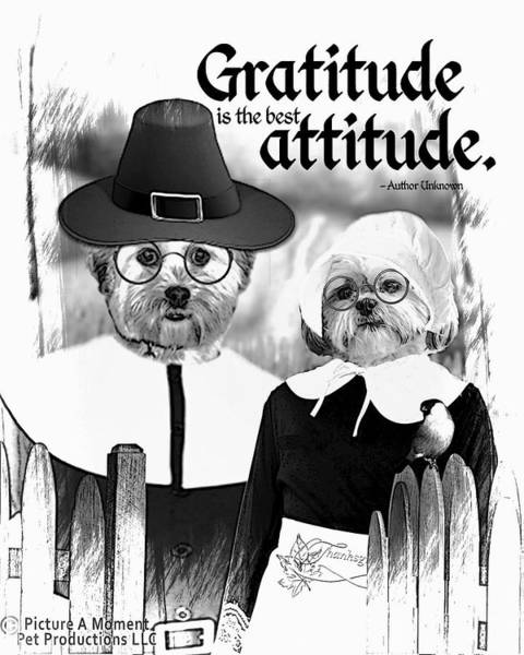 Digital Art - Gratitude Is The Best Attitude -2 by Kathy Tarochione