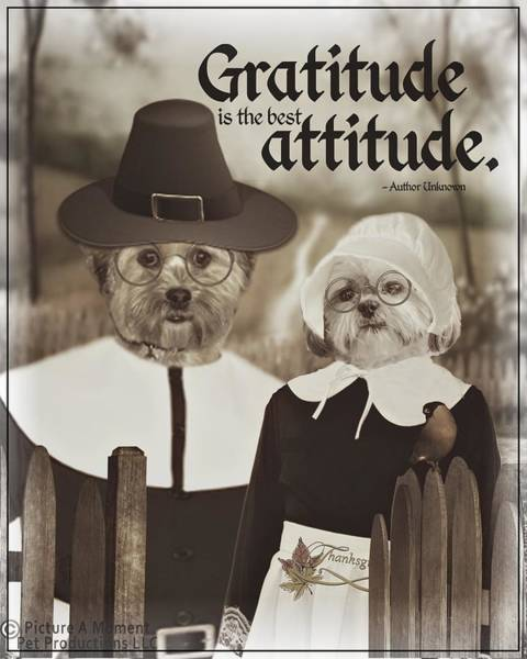 Digital Art - Gratitude Is The Best Attitude -3 by Kathy Tarochione