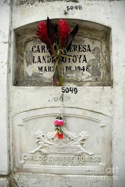 Wall Art - Photograph - Graveyard At La Ciudad Blanca by Sami Sarkis