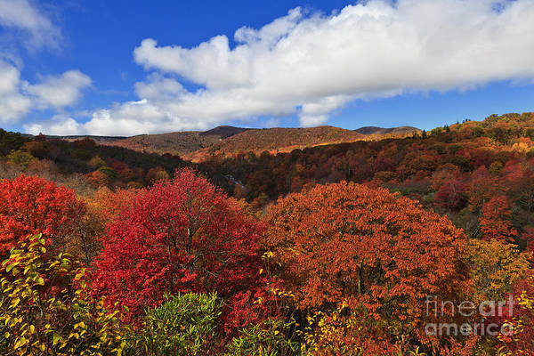Photograph - Graveyard Fields by Jill Lang