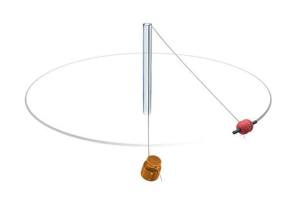 Photograph - Gravity Vs Centripetal Force by Mikkel Juul Jensen