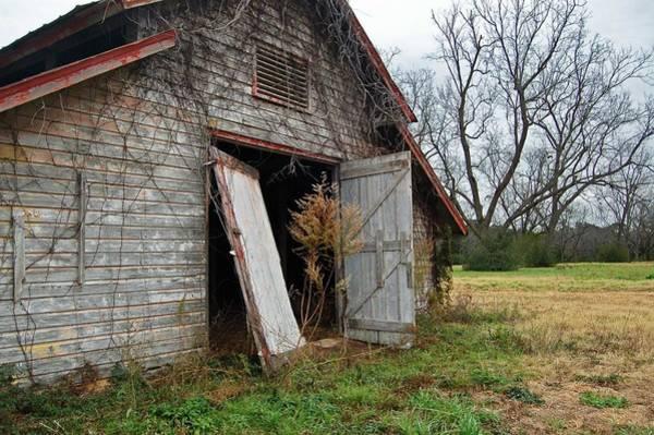 Digital Art - Gray Barn Door by Michael Thomas