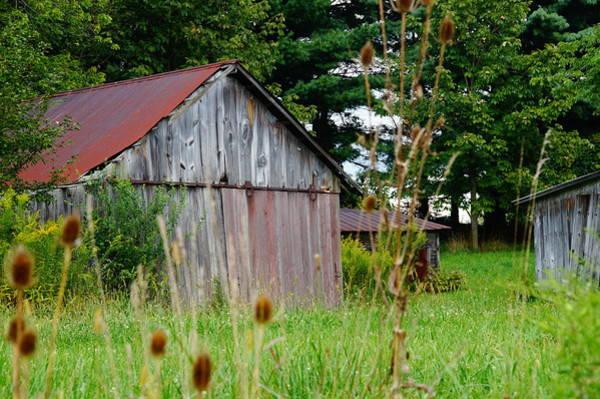 Photograph - Gray Barn by Mike Murdock
