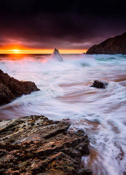 Photograph - Gray Whale Cove by Alexis Birkill