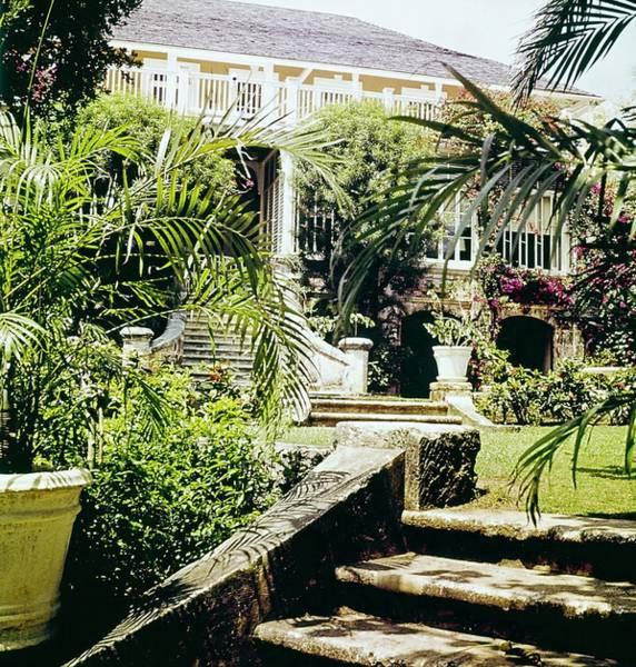 Ornamental Plant Photograph - Graycliff Gardens by Horst P. Horst