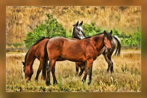 Photograph - Grazing Horses by Blake Richards