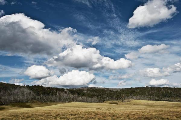 Grazing Photograph - Grazing Land At Bennison Plain In High by John Hay