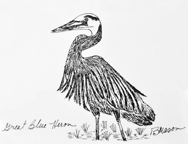 Great Blue Heron Drawing - Great Blue Heron by Becky Mason