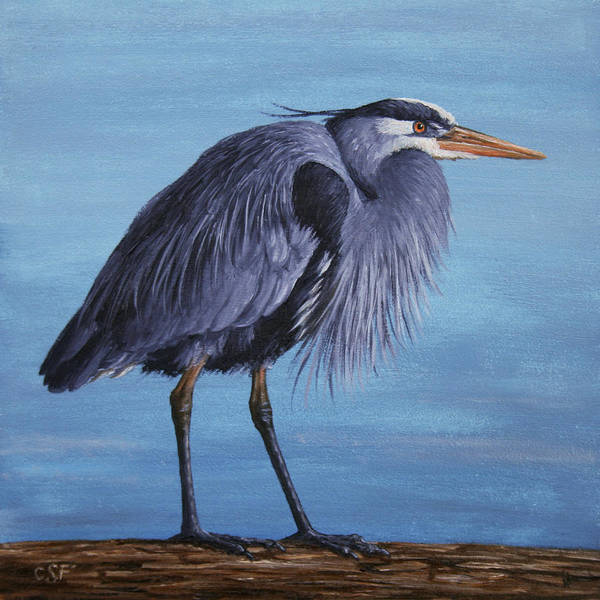 Waterfowl Wall Art - Painting - Great Blue Heron by Crista Forest