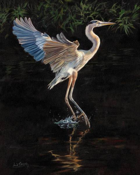 Great Blue Heron Wall Art - Painting - Great Blue Heron by David Stribbling