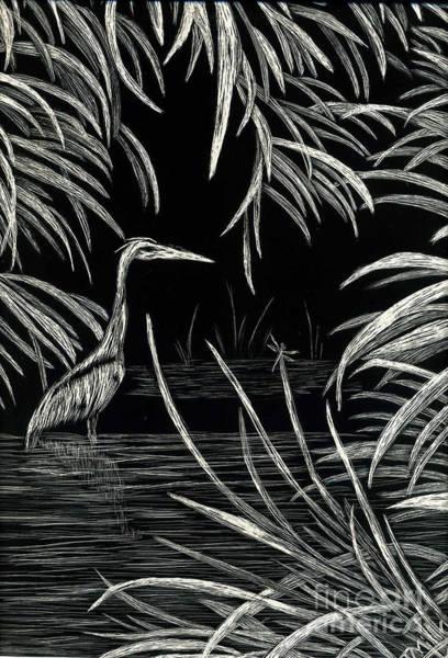 Great Blue Heron Drawing - Great Blue Heron by Terri Mills