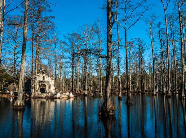 Photograph - Great Cypress Swamp by Louis Dallara