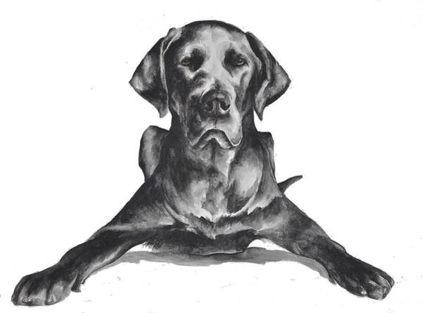 Black Great Dane Painting - Great Dane by Jennifer Stefani
