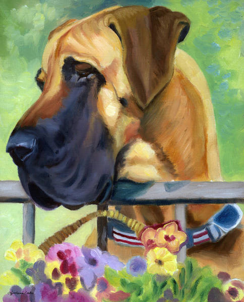 Great Dane Painting - Great Dane On Balcony by Lyn Cook