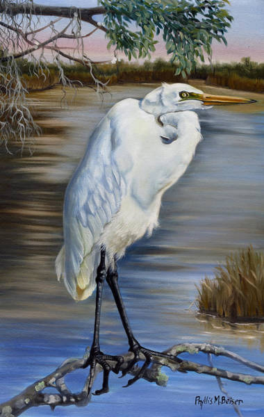 Wall Art - Painting - Great Egret At Sylvia's Pond by Phyllis Beiser