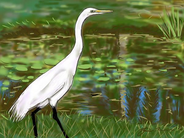 Painting - Great Egret by Jean Pacheco Ravinski
