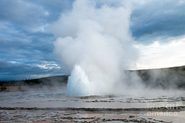 Photograph - Great Fountain Geyser On Firehole Lake Drive by Fred Stearns